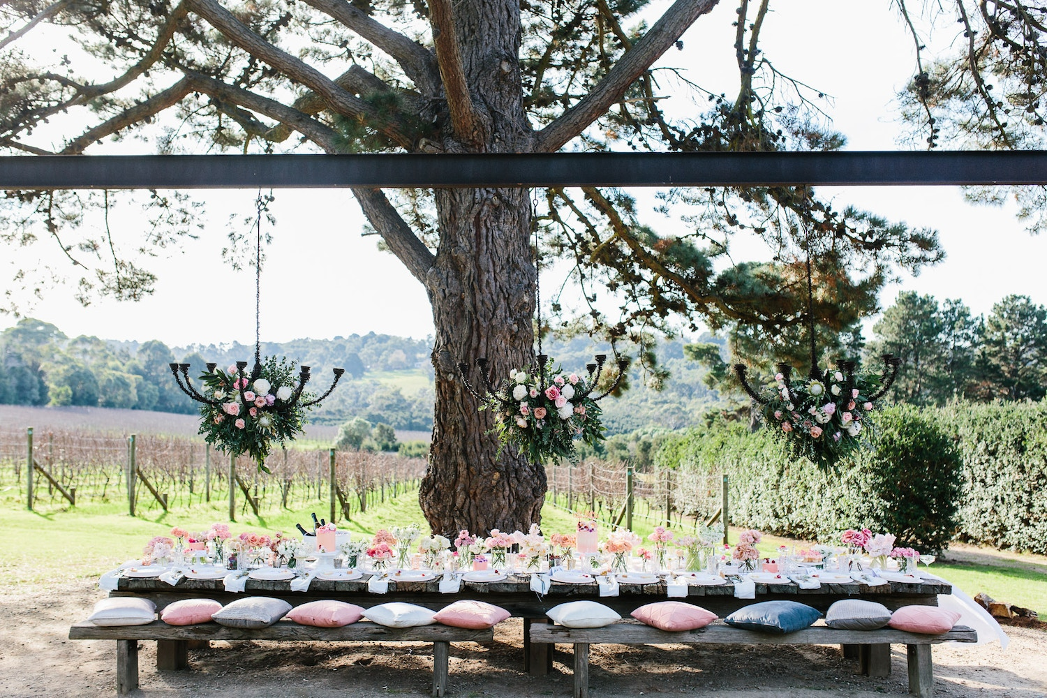LENZO'S PINK WINERY HEN'S DAY