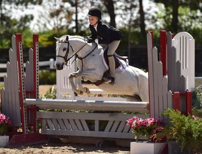 What Should You Be Looking For In A Pony?