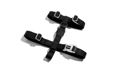 Zee Dog Neopro Adjustable Soft Dog H Harness Black - 4 Sizes