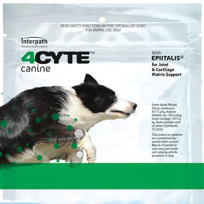 4CYTE Canine Joint Support For Dogs