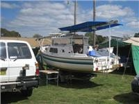 GoSee  joins RV invasion of National Folk  Festival with caravans, motorhomes, horse floats and a trailer-sailer