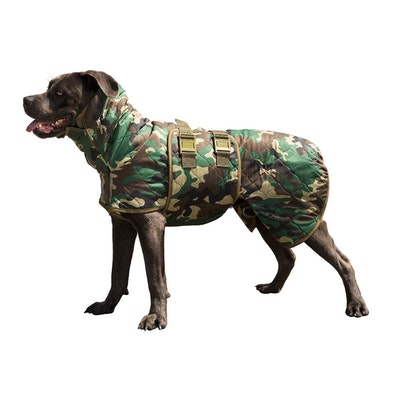 Siccaro Spirit Drying Coat for Dogs