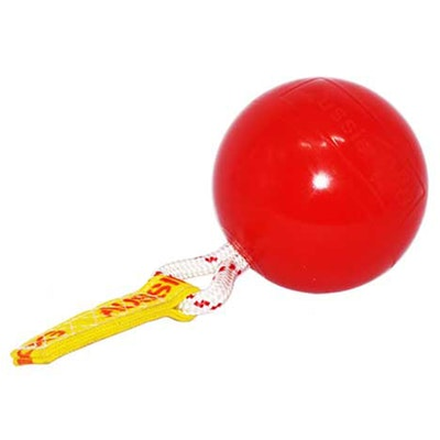 Aussie Dog Mini Horse Ball with Rattle Horse Pony Toy 190mm