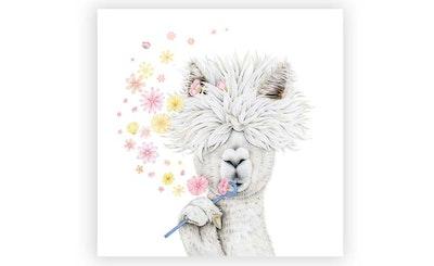 "Print: ""Lady Alpaca"""