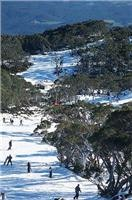 Gippsland is a touring experience for all seasons courtesy imagesofgippsland
