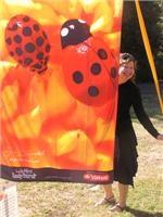 Ladybird luck to you from colourful Artomologist Jane Davenport