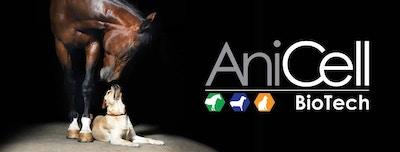 The Advantages of AniCell