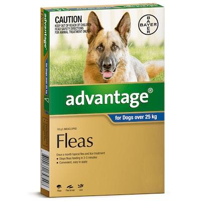 Advantage Extra Large Dog 25kg & Over Blue Spot On Flea Treatment - 3 Sizes