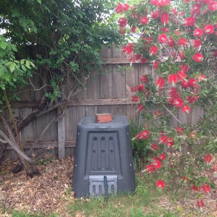 blog-compost-bin-jpg