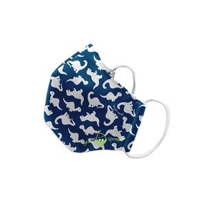 green sprouts Reusable Face Mask Child-Blue Dino