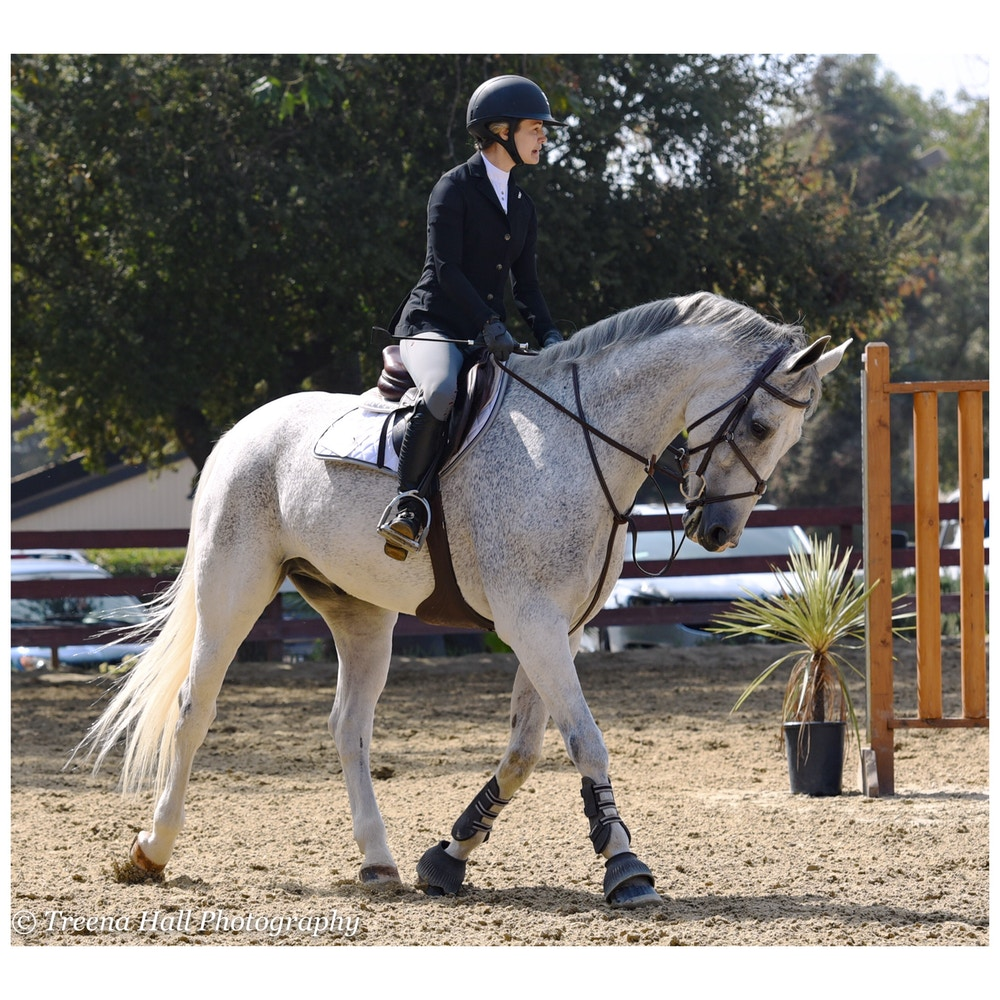 Two Bits Equestrian: Patience is Key