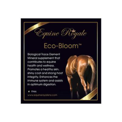 eco-bloom-png