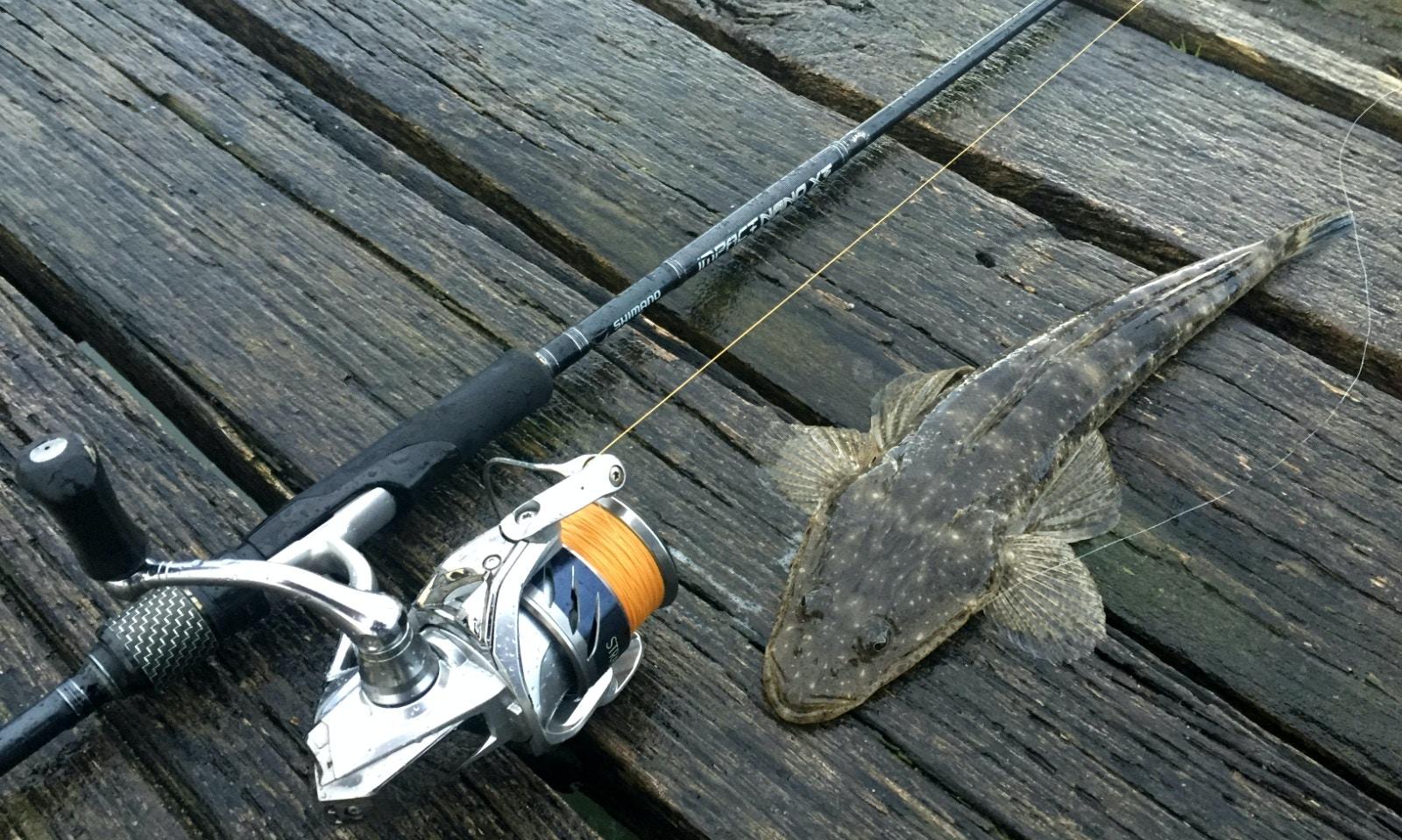 Mallacoota Fishing Advice - Hunting Flathead & Black Bream in Croajingolong National Park