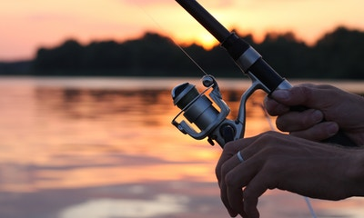 How to Choose the Right Fishing Reel