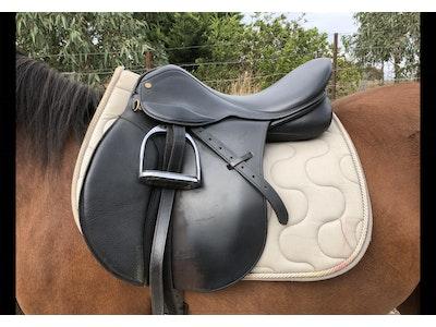 Trainer GP Saddle