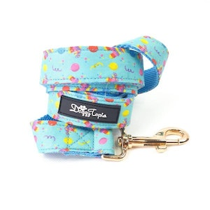 DoggyTopia Let's Get Smashed Birthday Leash