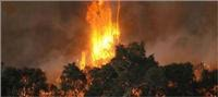 Make informed decisions when travelling in bushfire areas of Victoria
