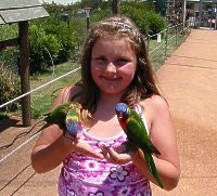 Across the road Emma makes friends with Lorikeets in The Bird Walk