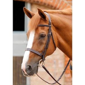 Premier Equine Primo Hunter Bridle