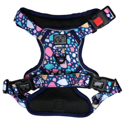 Big & Little Dogs Trevi Terrazzo All Rounder Harness