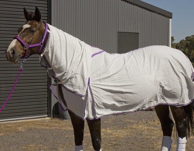 Capriole Equestrian Purple & Lime Green Summer Combo Rug