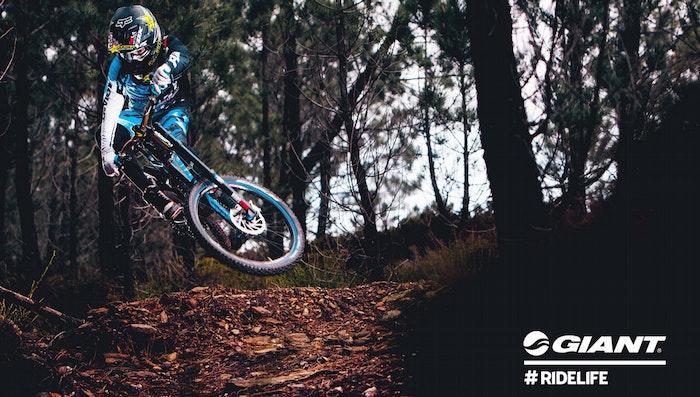 http://www.bikeexchange.com.au/dbimages/ArticleImage/53/53/display_Giant_Banner.jpg