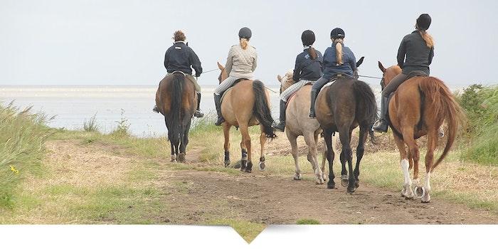 horse-riding-jpg