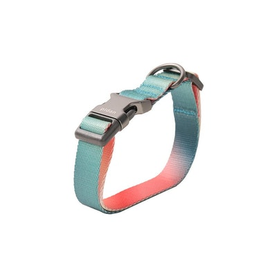 Pidan Collar – Dog – A2