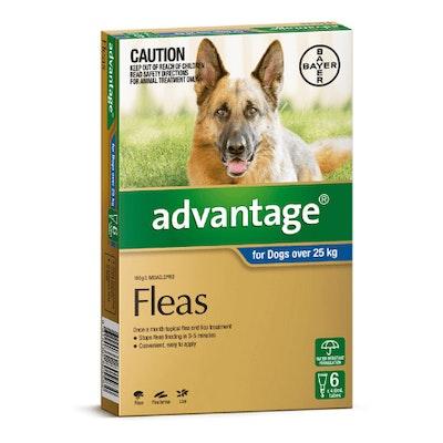 Advantage Flea Treatment 25kg+ Dog