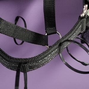 Flexible Filly Muzzle Zip Ties