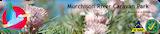 Murchison River Caravan Park