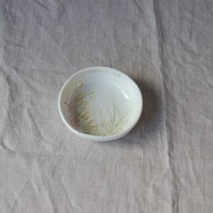 Grevillea 'flamingo' Dip Bowl