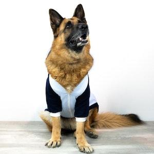 DoggyTopia Active Zip Hoodie - Blue
