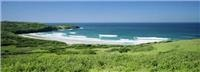 The Farm Killalea State Park courtesy Tourism Shellharbour