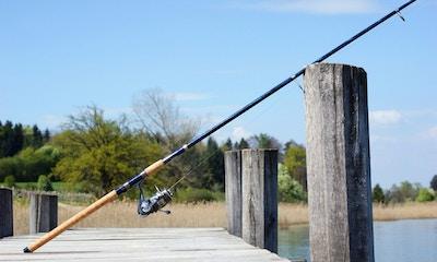 The Rundown on Rods & Reels