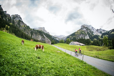 The Rolling Hills, Cowbells, and Elegant Villages of Gstaad & Emmental