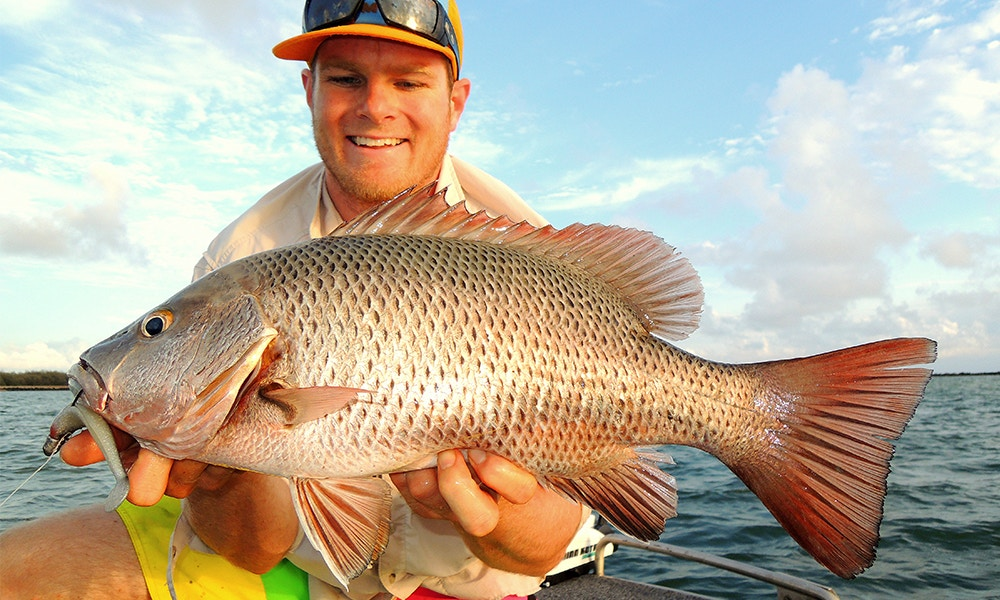 Fishing North Queensland: Barramundi and Mangrove Jack
