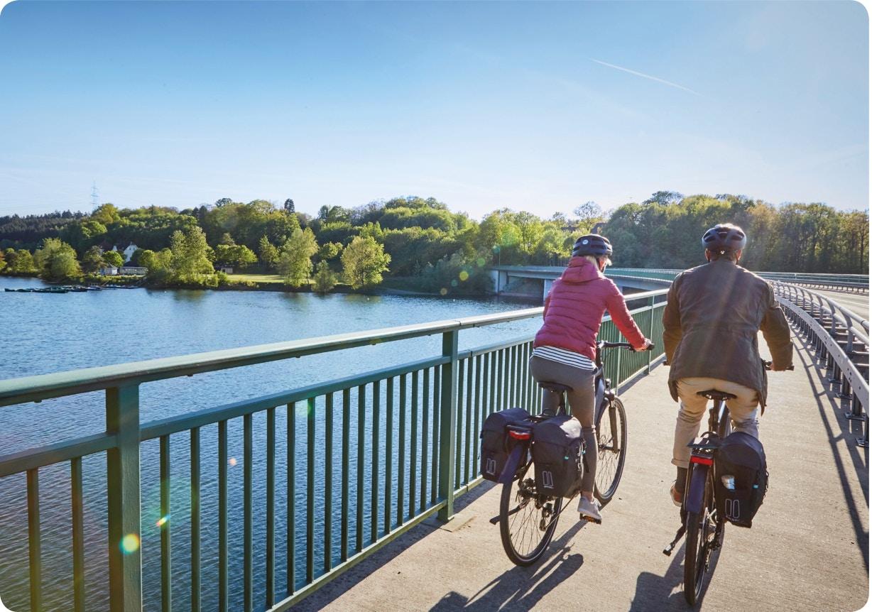 Basil - Spread the cycling joy – 365 days a year!