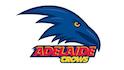 Adelaide Football Club Ltd