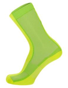 Santini Puro Socks