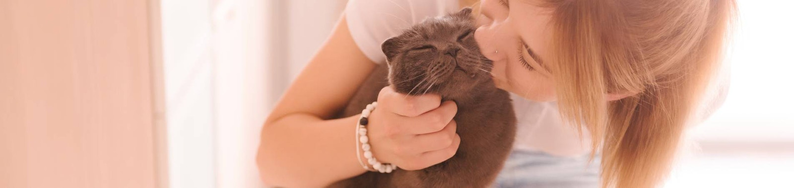 Keeping a Healthy Happy Cat