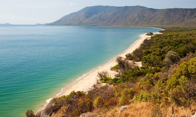 Great Barrier Reef Drive: Cairns to Cape Tribulation
