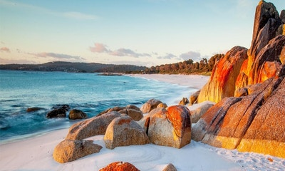 A Guide to Tasmania