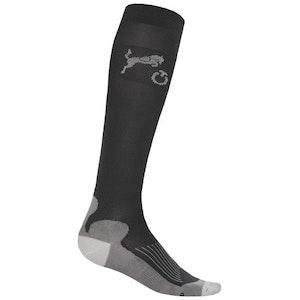 Cavalleria Toscana Jumping Horse Socks