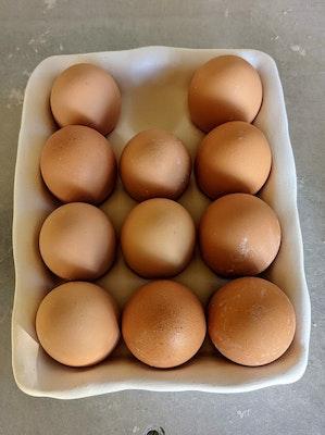 Scenic Rim Pottery Reusable egg carton