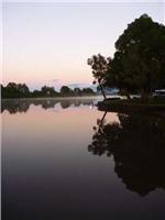 Bellinger River Tourist Park shrugs off 4th flood as rainfall hits 9ft mark