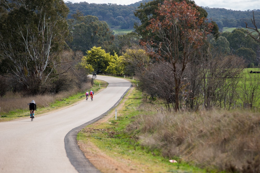 solo rider in the king valley