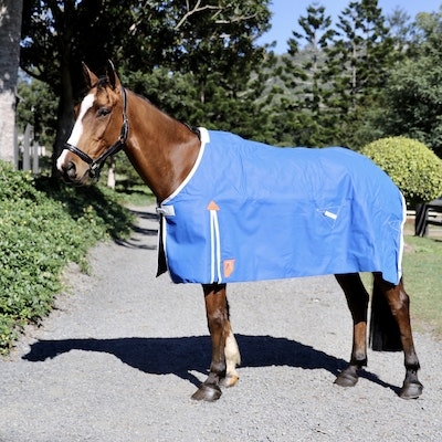 Capriole Equestrian 16oz Lined Canvas Waterproof Rug.
