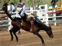 Riding for a fall, Mareeba Rodeo