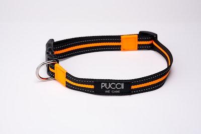 Puccii Collar ORANGE (M-L dogs)